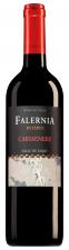Viña Falernia Elqui Valley Carmenère Reserva rt46