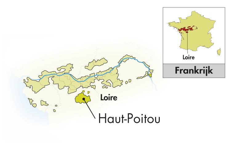 Domaine La Tour Beaumont Haut-Poitou Sauvignon Fié Gris